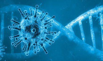 Covid-19 : deux mois après leur infection, de nombreux patients présentent de nouveaux symptômes
